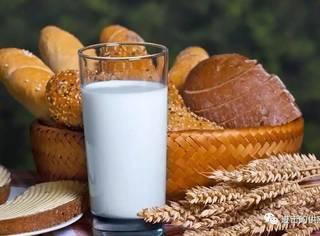 你知道牛奶的一生吗?从采集到餐桌,中间都经历了什么?