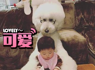 这个一岁宝宝和狗狗的成长日记真的是萌翻了