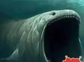 深海恐惧症患者勿入,容易喘不上气!