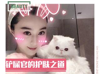 范冰冰刘亦菲通通被喵星人征服,想养猫的你知道怎么防止过敏吗?