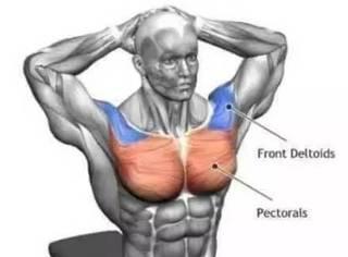 缓解酸痛,加速恢复,24张图教你如何正确拉伸!