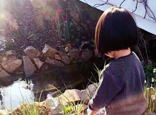这个男人给老婆孩子打造了童话般的家,美成了宫崎骏动画!