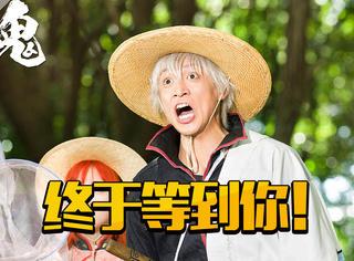 爆灯!《银魂》定档9月1日上映,最好的日本漫改电影开学前刷起来