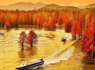 曾经湮没在千岛湖和乌镇名气背后,这座小山城的美终于被世人发现了!