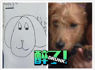 凭着这张抽象简笔画,女孩还真的找到了失踪的狗狗