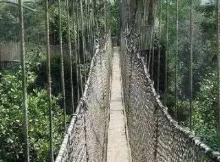世界上最恐怖的8座桥,比玻璃天桥恐怖10000倍!