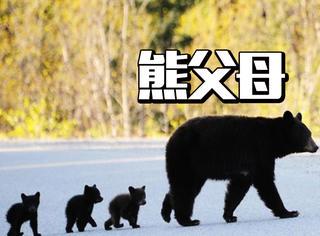 女子看电影结果被打伤,其实比熊孩子更加可怕的是熊家长!