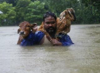 几乎没有人注意到,这一次东南亚地区已经有1200多人死于洪水