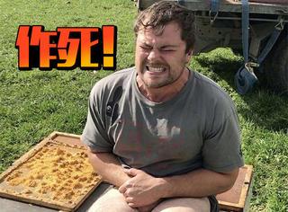 为了1000块钱,他光着屁股坐在了蜜蜂上
