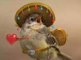 如果把飞鸟拟人化,貌似它们的世界还挺童趣的~