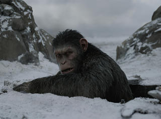 《猩球崛起3》海外评价:有人夸配乐一级棒,有人吐槽是垃圾