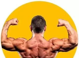 你能一组动作搞定胸,背、肱二头吗?