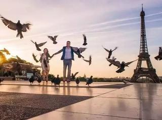 在巴黎喂鸽子都浪漫?你是不知道法国人为了驱赶鸽子连这招都用上了…
