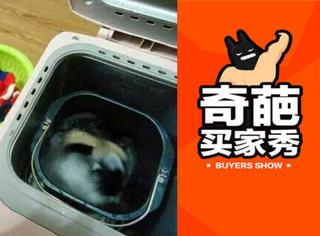 没看错的话,这没准或许大概可能是在洗衣服!
