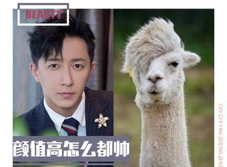 """韩庚的""""羊驼刘海""""一点都不搞笑,很帅好嘛!"""