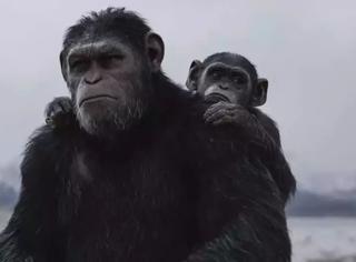 不管《猩球崛起3》票房爆不爆,它都是今年最好的商业片之一