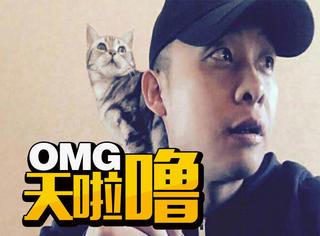 超会演戏的撸猫者,微博晒图只是基础,知乎文章已经上线!
