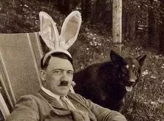 假如维也纳艺术学院没有拒绝希特勒,历史会是怎样? 