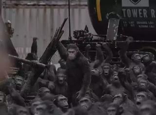 从《猩球3》到《变5》,看完今年最卖座的13部好莱坞大片,我们发现越接地气越吸金!