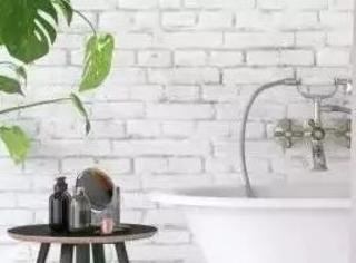 参观了几个法国人的浴室,发现自己住得不如人家的马桶