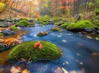 东北的秋日童话高速,从长白山南麓穿越到中朝边境一路美醉!