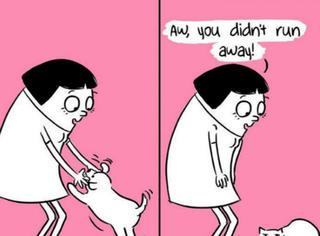 这就是养猫和养狗的本质区别,养猫的该哭了