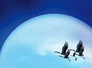 李白:他一生张狂,却旖旎了月光