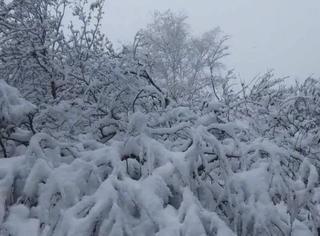 你在南方艳阳里露着腰,我在北方寒夜里冻成狗……