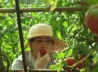 一年四季的食谱都被这耕地的少女承包了