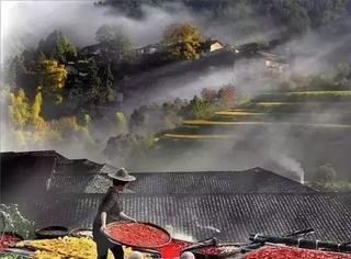 光速入冬的北京,让我们都快忘了秋天该是什么样子