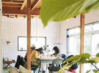 日本一杂志社建了这么一间工作室,在这里上班,睡觉都能笑醒吧…