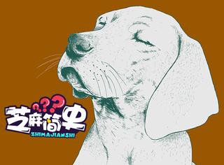 名人和狗的迷之缘分(三):一只汪让牛顿抑郁了1年