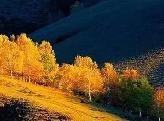 10月中国最美的10个秋景圣地,随手都是大片!