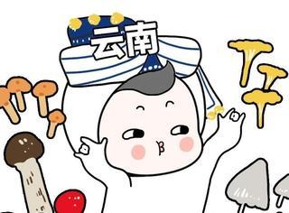 千万不要去云南旅游!哈哈哈哈哈哈哈哈哈哈哈哈哈哈哈