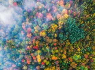 上帝眼中的秋是怎般模样?惊艳!