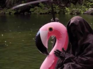 骑火烈鸟,荡秋千,竟然被这样的死神萌到