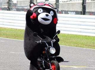 这么蠢萌的熊本熊,到底怎么成为风靡全球的「网红吉祥物」的?