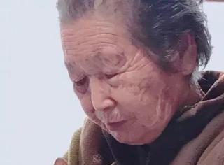这个92岁老奶奶,多年坚持收养被遗弃的猫