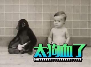这是历史上真实的猩球崛起实验,结局却一样地悲剧