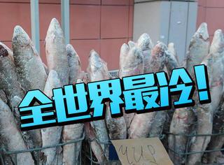 全世界最冷的城市,冬天出门菜市场没有蔬菜只有鱼!