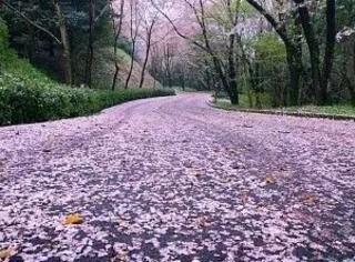日本平整马路下原来隐藏这样秘密
