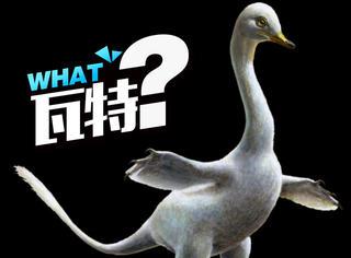 他们找到一块7500万年的恐龙化石,看起来却像鸭子