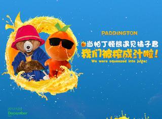 当帕丁顿熊遇上橘子君,我们就被榨成汁啦!