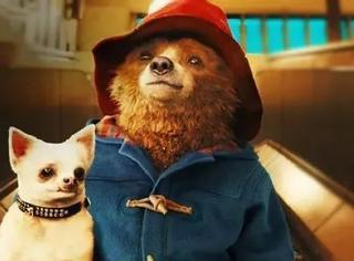 这只穿着羊角大衣会讲话的熊,萌翻整个冬天