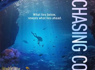 2016年大堡礁失去了29%的珊瑚,原来这些美丽正在消失