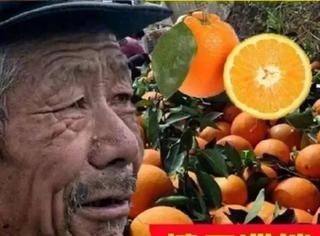 淘宝第一网红大爷,家业直逼马云!