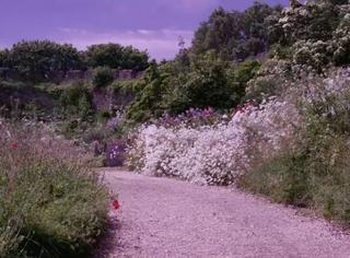 女王御用园艺师的伊甸花园