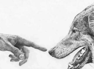 人类是唯一拥有自我意识的动物吗?