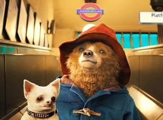 全世界最暖心的帕丁顿熊,跟着他一起去伦敦冒险吧!