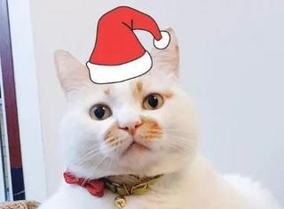 圣诞节,怎样给自己的头像加个圣诞帽?